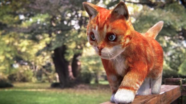 Kitten_Fur2